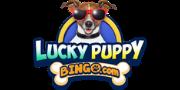 Booty Bingo sister sites - Bingo rooms & casinos with Slingo, bingo jackpots & Eyecon games. 2